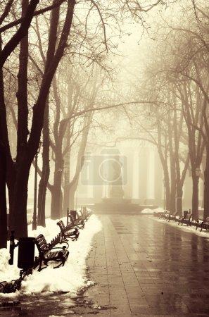 Winter alley in Odessa, Ukraine.