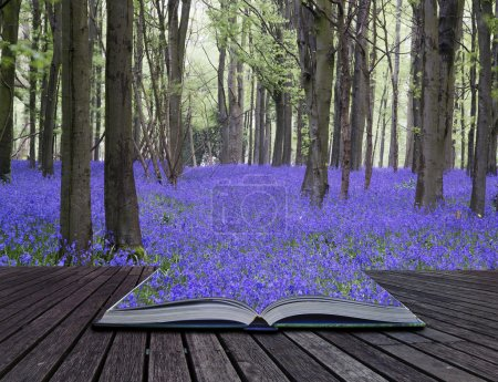 Creative concept pages of book Vibrant bluebell carpet Spring fo
