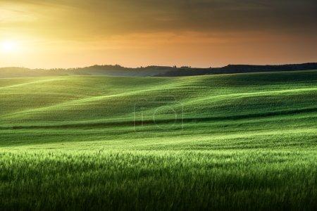 Tuscany sunset, Italy